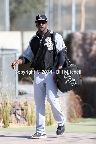 Jared Mitchell - Chicago White Sox 2014 spring training (Bill Mitchell)