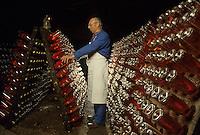 Europe/France/Pays de la Loire/Maine-et-Loire/Saumur : AOC Saumur - Remuage du pétillant rosé chez Gratien Meyer [Non destiné à un usage publicitaire - Not intended for an advertising use] [Non destiné à un usage publicitaire - Not intended for an advertising use]