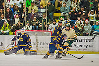 29 December 2013:  Canisius College Golden Griffins goaltender Keegan Asmundson, a Junior from Inver Grove Heights, MN, in first period action against the University of Vermont Catamounts at Gutterson Fieldhouse in Burlington, Vermont. The Catamounts defeated the Golden Griffins 6-2 in the 2013 Sheraton/TD Bank Catamount Cup NCAA Hockey Tournament. Mandatory Credit: Ed Wolfstein Photo *** RAW (NEF) Image File Available ***