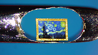 BNPS.co.uk (01202 558833)<br /> Pic: DavidALindon/BNPS<br /> <br /> Pictured: David's version of Van Gogh's Starry Night in an eye of a needle<br /> <br /> A collection of micro masterpieces so tiny they fit inside the eye of a needle have sold for a whopping £90,000.<br /> <br /> Micro artist David Lindon has recreated iconic artworks including Van Gogh's Starry Night in miniature form - each measuring just 0.5mm wide.<br /> <br /> David, who lives in Bournemouth, Dorset, uses a variety of micro-plastics to carve and paint his tiny pieces, with the aid of a microscope, and each one took months of painstaking work to complete.