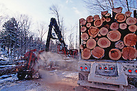 Felled tree trunks being loaded onto a truck.