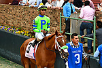 HOT SPRINGS, AR - APRIL 13: Apple Blossom Handicap at Oaklawn Park on April 13, 2018 in Hot Springs, Arkansas. #3 Fuhriously Kissed with jockey C.J. McMahon. (Photo by Ted McClenning/Eclipse Sportswire/Getty Images)