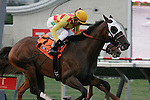 Unusual Heatwave winner of the Real Good Deal Stakes at Del Mar Race Course in Del Mar, California on August 3, 2012.