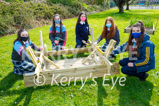 Presentation Secondary school students putting the finishing touches to the benches so that they can enjoy the outdoors at the school. L to r: Scarlett and Isabella Bright, Megan Diggins, Clodagh Hickey and Aine Hanafin.