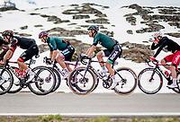 Maglia Ciclamino / Points Leader Peter Sagan (SVK/BORA - hansgrohe) up the Passo San Bernardino (2065m/SUI) on a Ciclamino painted new bike<br /> <br /> 104th Giro d'Italia 2021 (2.UWT)<br /> Stage 20 (through Switzerland) from Verbania to Valle Spluga-Alpe Motta (164km)<br /> <br /> ©kramon