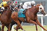 September 1, 2014: #4 Quality Lass, John Bisono up, gets past Joya Real (#9) just in time to win the Turf Amazon Handicap at Parx Racing in Bensalem, PA. Trainer is Guadalupe Preciado; owner is West Point Thoroughbreds. ©Joan Fairman Kanes/ESW/CSM