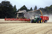 Photo: Richard Lane/Richard Lane Photography..A Claas Lexoin 570 Montana combine harvester unloading into a trailer while cutting spring barley in the Chiltern Hills near Amersham, South Buckinghamshire. 12/08/2007.
