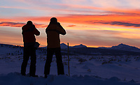 Photographers shoot sunset from Blacktail Plateau.