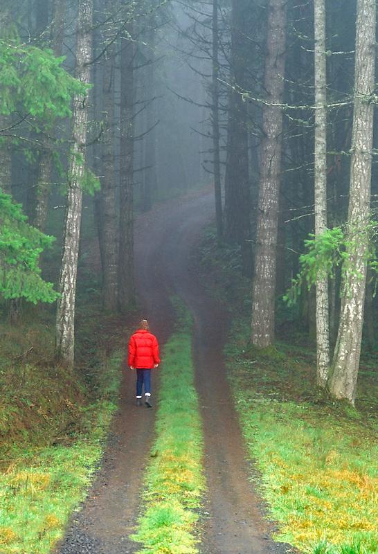 Walker on fog covered road. Near Monroe, Oregon.