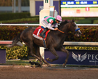 HALLANDALE FL - JANUARY 28: Mike Smith atop Arrogate crosses the finish line to win The Inaugural $12 Million Pegasus World Cup Invitational, The World's Richest Thoroughbred Horse Race At Gulfstream Park on January 28, 2017 in Hallandale, Florida<br /> <br /> People:  Mike Smith, Arrogate