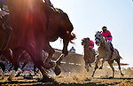 Arcadia CA- April 06: Flashback and Garrett Gomez race by the grandstand for the first time in the 2013 running of the Santa Anita Derby at Santa Anita Park in Arcadia, CA on April 6, 2013. (Alex Evers/ Eclipse Sportswire)