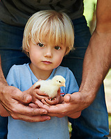 A little boy with a chick
