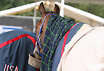 26 September 2010.   A team USA horse rests during a vet check.