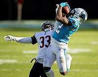 Photography of The Carolina Panthers v. The Chicago Bears, during their Sunday afternoon NFL gam e at Bank of America Stadium in Charlotte, NC.<br /> <br /> Charlotte Photographer - PatrickSchneiderPhoto.com