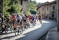 World Champion Mads Pedersen (DEN/Trek-Segafredo) rolling through town<br /> <br /> Stage 19 from Bourg-en-Bresse to Champagnole (167km)<br /> <br /> 107th Tour de France 2020 (2.UWT)<br /> (the 'postponed edition' held in september)<br /> <br /> ©kramon