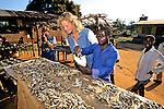 Woman In Fish Market