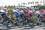 The peloton passes by Damac Hills during Stage 6 of the 2021 UAE Tour running 1ough Dubai city65km from Deira Island to Palm Jumeirah, Dubai, UAE. 26th February 2021.<br /> Picture: LaPresse/Fabio Ferrari   Cyclefile<br /> <br /> All photos usage must carry mandatory copyright credit (© Cyclefile   LaPresse/Fabio Ferrari)