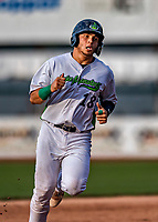 21 July 2019: Vermont Lake Monsters designated hitter Jose Rivas rounds the bases after getting driven in to score in the 4th inning against the Tri-City ValleyCats at Centennial Field in Burlington, Vermont. The Lake Monsters rallied to defeat the ValleyCats 6-3 in NY Penn League play. Mandatory Credit: Ed Wolfstein Photo *** RAW (NEF) Image File Available ***