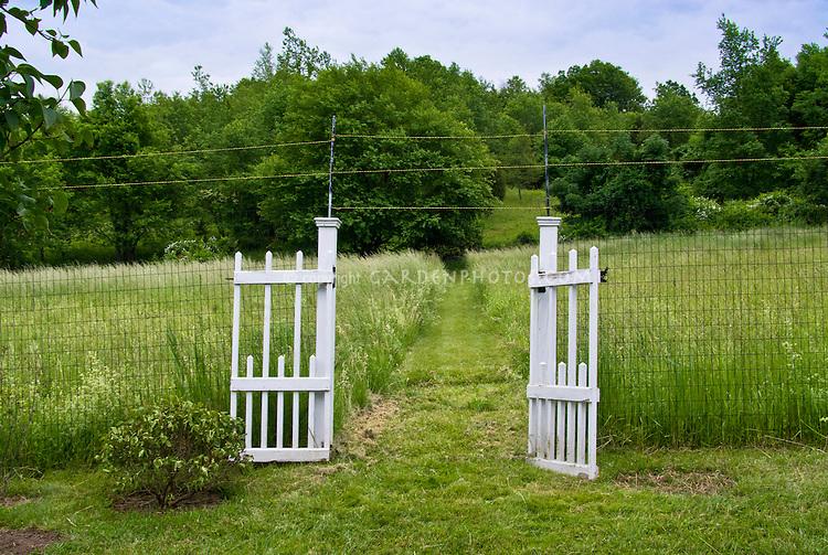 Garden gate electric fence fencing into meadow field farm deer deterent