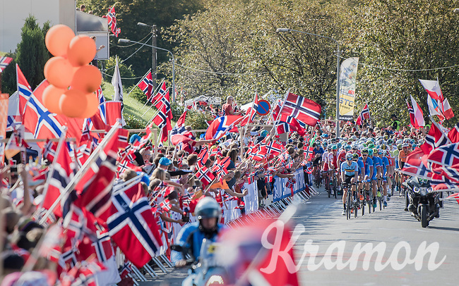 Julien Vermote (BEL/Quick-Step Floors) steering the peloton up between the many flags of Salmon Hill<br /> <br /> Men Elite Road Race<br /> <br /> UCI 2017 Road World Championships - Bergen/Norway