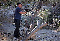 FAO JANET TOMLINSON, DAILY MAIL PICTURE DESK<br /> Pictured: Special forensics police officers fell a tree after to make space for a further search by a disused building in a field in Kos, Greece. Saturday 01 October 2016<br /> Re: Police teams led by South Yorkshire Police, searching for missing toddler Ben Needham on the Greek island of Kos have moved to a new area in the field they are searching.<br /> Ben, from Sheffield, was 21 months old when he disappeared on 24 July 1991 during a family holiday.<br /> Digging has begun at a new site after a fresh line of inquiry suggested he could have been crushed by a digger.