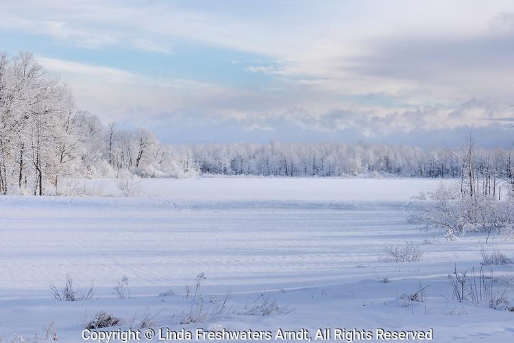 Snow-covered trees lining a frozen lake in northern Wisconsin.