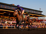 November 6, 2020: Essential Quality, ridden by Luis Saez wins the Breeders' Cup Juvenile at Keeneland Racetrack in Lexington, Kentucky on November 6, 2020. Alex Evers/Eclipse Sportswire/Breeders Cup