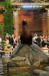 """NEW YORK, NY - JUNE 28:  Sea Lions perform at the 2011 Skin Cancer Foundation's """"A Night The Stars Shine On"""" at the Central Park Zoo on June 28, 2011 in New York City.  (Photo by Desiree Navarro/WireImage)"""