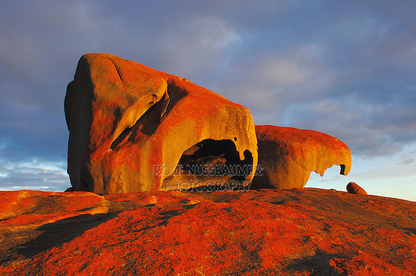 Remarkable Rocks at sunset, Kangaroo Island, Flinders Chase National Park, South Australia, Australia