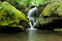 Near Grotto Falls, Great Smoky Mountains National Park, Tennessee