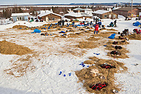 Teams rest in the Shageluk checkpoint during Iditarod 2009