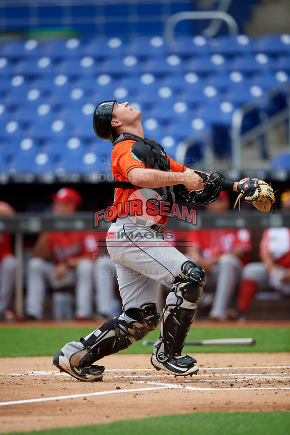 Miami Marlins catcher Nick Fortes (12) tracks a pop up during a Florida Instructional League game against the Washington Nationals on September 26, 2018 at the Marlins Park in Miami, Florida.  (Mike Janes/Four Seam Images)