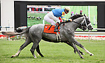 8 August 2009: TAKE THE POINTS with jockey Kent Desormeaux defeats BLACK BEAR ISLAND and jockey John Patrick Murtagh iat the finish of the 33rd running of the G1 Secretariat Stakes at Arlington Park in Arlington Heights, Illinois.