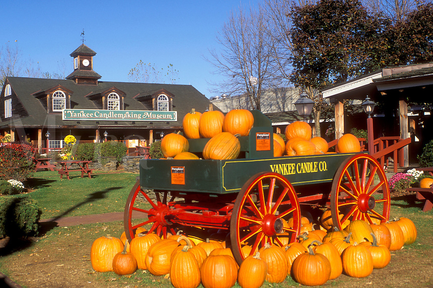 pumpkins, South Deerfield, MA, Massachusetts, The Connecticut River Valley, Fall display of orange pumpkins in a green wagon outside Yankee Candlemaking Museum at the Yankee Candle Company in South Deerfield in the autumn.