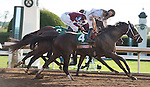 """October 04, 2015: Got Lucky and jockey Irad Ortiz Jr. win the 60th running of the Juddmonte Spinster (Grade 1) """"Win and You're In Distaff Division"""" $500,000 at Keeneland for trainer Todd Pletcher and owner Philip Steinberg and Hill 'n' Dale Equine Holdings. Samantha Bussanich/ESW/Cal Sport Media"""