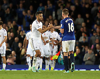 Liverpool, UK. Saturday 01 November 2014<br /> Pictured L-R: Neil Taylor of Swansea greets James McCarthy of Everton at the end of the game<br /> Re: Premier League Everton v Swansea City FC at Goodison Park, Liverpool, Merseyside, UK.