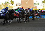 31 January 2009: Albertus Maximus, with Alan Garcia in the saddle, sits in second place as they pass the clubhouse the first time before winning the 51st running of the Grade 1 Donn Handicap for four-year-olds and upwards at Gulfstream Park in Hallandale, Florida.