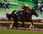 Buena Vista wins the 31st Japan Cup on November 27th, 2011 at Tokyo Racecourse