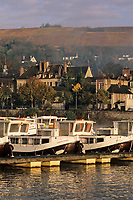 Europe/France/89/Yonne/Joigny: Brumes matinales sur la vallée de l'Yonne, le port fluvial avec les house-boat, les maisons du village et le vignoble de la Côte Saint Jacques