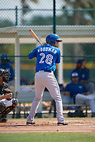 Toronto Blue Jays right fielder J.B. Woodman (28) at bat during an Instructional League game against the Pittsburgh Pirates on October 13, 2017 at Pirate City in Bradenton, Florida.  (Mike Janes/Four Seam Images)