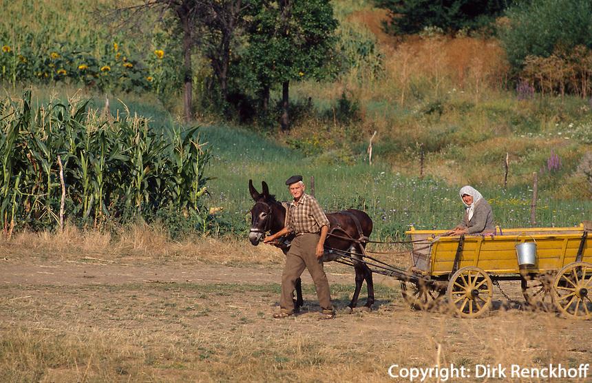 Bulgarien, Esel-Wagen
