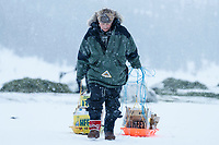 Race judge Judy Currier hauls left over supplies as cleanup happens during a heavy snow fall in the morning at the Rainy Pass checkpoint on Puntilla Lake during the 2019 Iditarod on Tuesday, March 5th 2019.<br /> <br /> Photo by Jeff Schultz/  (C) 2019  ALL RIGHTS RESERVED