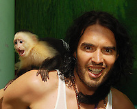 """SMG_EXC_Russell Brand_Jungle Island_050811_06_EXCLUSIVE COVERAGE<br /> <br /> MIAMI, FL - MAY 08: (EXCLUSIVE COVERAGE) Actor Russell Brand spent the afternoon at Jungle Island.   Russell enjoyed the special Lemur tour as well as making friends with an Alligator; his favorite though seemed to be """"Gizmo"""" the Capuchin Monkey.  Russell and his friend Nicola seemed to have an amazing day as they enjoyed the park and all the animals. Russell also took he time to sign autographs and to pose for pictures with fans. Russell Edward Brand (born 4 June 1975) is an English comedian, actor, columnist, singer, author and radio/television presenter. Meanwhile wife Katy Perry was in Australia on tour. On May 8, 2011 in Miami, Florida.   (Photo By Storms Media Group)<br />  <br />  <br /> People:   Russell Brand<br /> <br /> Must call if interested<br /> Michael Storms<br /> Storms Media Group Inc.<br /> 305-632-3400 - Cell<br /> 305-513-5783 - Fax<br /> MikeStorm@aol.com"""