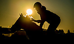 October 31, 2020: Scenes from morning workouts as horses prepare for the 2020 Breeders' Cup at Keeneland Racetrack in Lexington, Kentucky on October 31, 2020. Scott Serio/Eclipse Sportswire/Breeders Cup/CSM