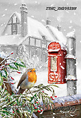 Marcello, CHRISTMAS LANDSCAPES, WEIHNACHTEN WINTERLANDSCHAFTEN, NAVIDAD PAISAJES DE INVIERNO, paintings+++++,ITMCXM2082BW,#XL# ,red robin