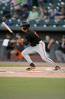 Left fielder Robbie Thorburn (17) of the Delmarva Shorebirds bats in a game against the Columbia Fireflies on Thursday, May 2, 2019, at Segra Park in Columbia, South Carolina. Delmarva won, 1-0. (Tom Priddy/Four Seam Images)