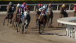 3 April 2011:  S.S. Stone ridden by Julien Leparoux leads the pack around the fourth corner in the Skip Away Stakes at Gulfstream Park in Hallandale Beach, FL. (Photo by Max Lashin/Eclipse Sportswire)