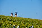 Europa, DEU, Deutschland, Rheinland-Pfalz, Mittelrheintal, Ruedesheim am Rhein, Abtei St. Hildegard, Weinbau, Weinanbau, Rebbau, Natur, Umwelt, Landschaft, Landschaftsfotos, Landschaftsfotografie, Landschaftsfoto, Tourismus, Touristik, Touristisch, Touristisches, Urlaub, Reisen, Reisen, Ferien, Urlaubsreise, Freizeit, Reise, Reiseziele, Ferienziele, Ruedesheim am Rhein ist eine Weinstadt im hessischen Rheingau-Taunus-Kreis und liegt mit dem gegenueberliegenden Bingen am suedlichen Tor zum Mittelrheintal. Ruedesheim gehoert mit zum UNESCO-Welterbe Oberes Mittelrheintal. Die Abtei St. Hildegard ist ein Benediktinerinnenkloster in Eibingen bei Ruedesheim im Bistum Limburg. Seit 2002 ist die Abtei Teil des UNESCO-Welterbes Oberes Mittelrheintal.<br /> <br /> [Fuer die Nutzung gelten die jeweils gueltigen Allgemeinen Liefer-und Geschaeftsbedingungen. Nutzung nur gegen Verwendungsmeldung und Nachweis. Download der AGB unter http://www.image-box.com oder werden auf Anfrage zugesendet. Freigabe ist vorher erforderlich. Jede Nutzung des Fotos ist honorarpflichtig gemaess derzeit gueltiger MFM Liste - Kontakt, Uwe Schmid-Fotografie, Duisburg, Tel. (+49).2065.677997, ..archiv@image-box.com, www.image-box.com]