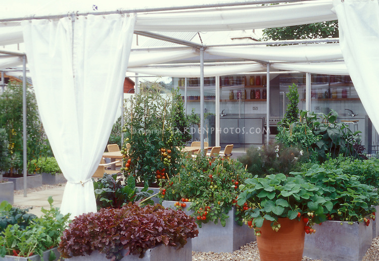 Urban Raised bed containers of vegetables, strawberries, tomatoes, in galvanized steel containers, with shade cloth drapings, and modern sophisticated kitchen, in a rooftop garden design