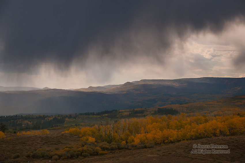 Early Autumn Storm, Boulder Mountain, Utah